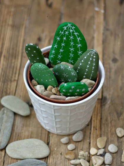 cactus galet.png